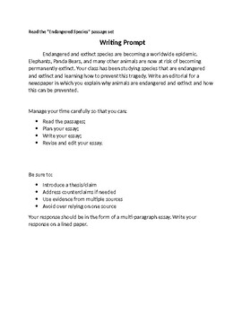 Fsa Informative Essay Writing Worksheets Teaching Resources Tpt