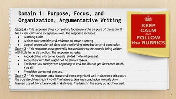 FSA Writing Argumentative Essay Rubrics Examples And Group Work