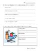 FSL Quiz- La salle de classe, les nombres, les jours et les mois