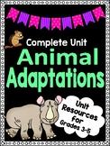 FULL UNIT - Animal Adaptations - End of Year Fun!!