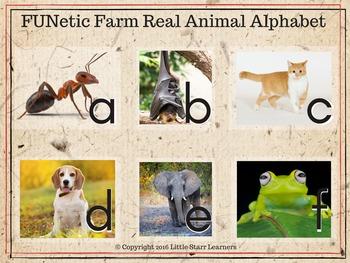 """FUNetic Farm """"Real"""" Animal Alphabet Flashcards (Photos)"""