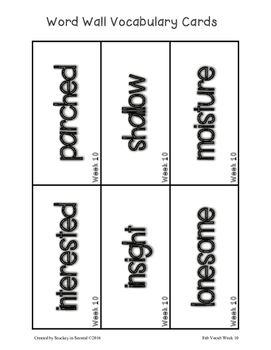 Fab Vocab {Week 10} A Weekly Vocabulary Unit