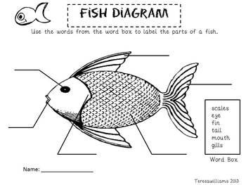 Fabulous Fish