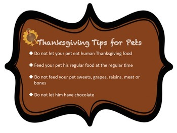Fabulous New Thanksgiving Pet Safety Tips