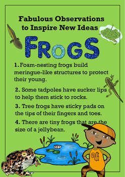 Fabulous Observations to Inspire New Ideas - Frogs