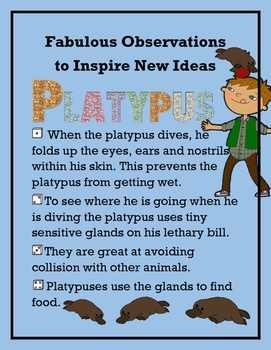 Fabulous Observations to New Ideas - Platypus