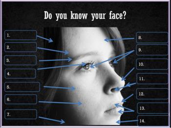 Faces – conversation English - ESL adult conversation