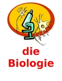 Schulfächer (School Subjects in German) Posters