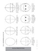 Facial Proportions Worksheets - How to draw the human face handout