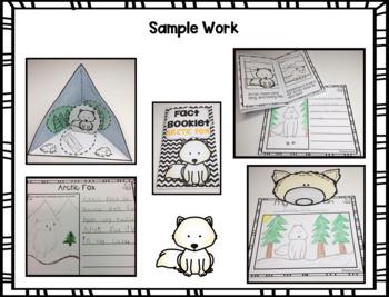 Fact Booklet - Arctic Fox