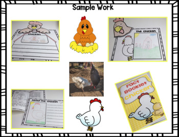 Fact Booklet - Chicken