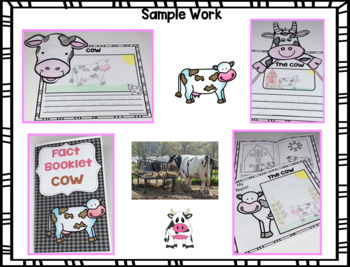 Fact Booklet - Cow