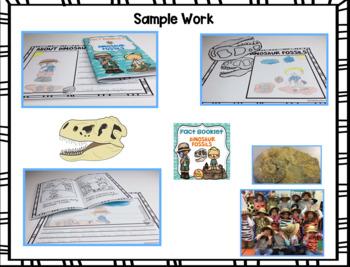 Fact Booklet - Dinosaur Fossils