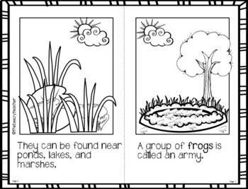 Fact Booklet - Frog