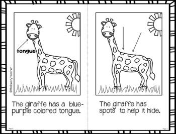 Fact Booklet - Giraffe