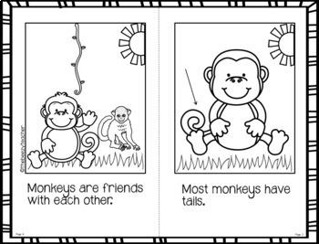 Fact Booklet - Monkey