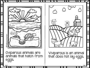 Fact Booklet - Oviparous Animals