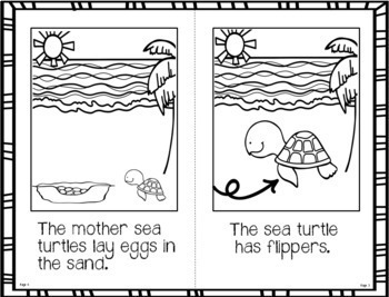 Fact Booklet - Sea Turtle