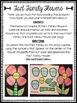 Fact Family Flower Craft