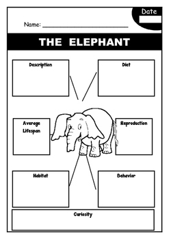 Fact Files - WILD ANIMALS