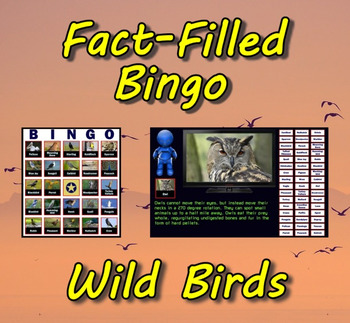 Fact-Filled Bingo - Wild Birds