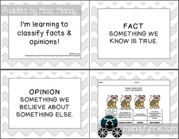 Fact & Opinion Activities