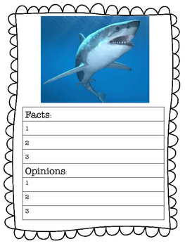 Fact Or Opinion Research Activity