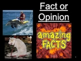 Fact and Opinion Quiz