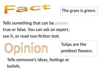 Fact and Opinion mini poster