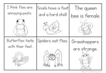 Fact or Opinion Sort - Insects