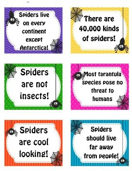 Fact vs. Opinion for Spiders