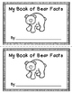 Facts About Bears
