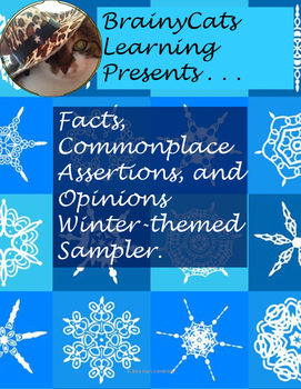 Facts, Commonplace Assertions, and Opinions Winter-themed sample