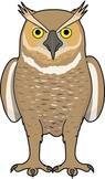 SMARTboard activity Facts and Myths about Owls