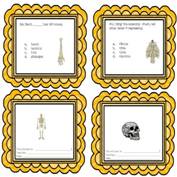 Halloween Anatomy and the Human Skeletal System Science Center Station