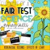 Fair Test Investigation: Plant Growth Conditions Experiment // Light Conditions
