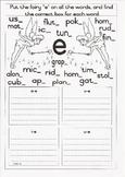 """Fairy """"e"""" or Magic """"e"""" Worksheet"""