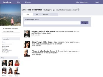Fakebook activity -Social Media (French)