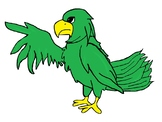 Falcon or Eagle Clipart