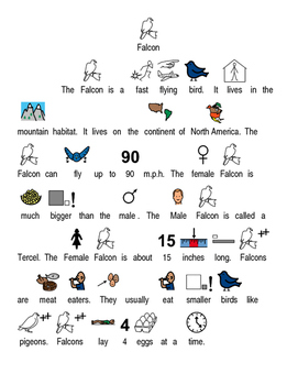 Falcon - picture supported text lesson article with questions PDF