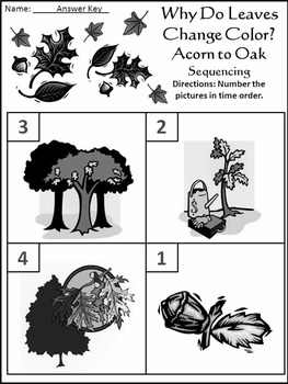 Fall Reading Activities: Why Do Leaves Change Color in the Fall Activity Packet