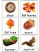 Fall Vocabulary Photo Flash Cards