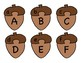 Fall Acorn Alphabet Letter Matching Puzzle Game or Center