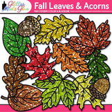 Fall Acorn & Leaf Clip Art {Fall Graphics for Back to Scho
