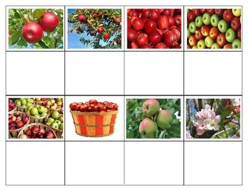 Fall Apples:  Mini Matching Cards