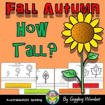 Fall Autumn How Tall?