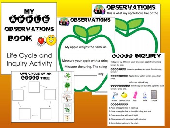 Fall Autumn Leaf, Pumpkin & Apple Observation, Experiment & Life Cycle books