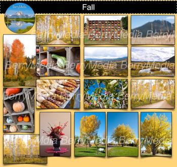 Fall Images, Autumn, Pumpkins, Squash Aspen Alley