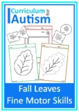 Fall Autumn Leaves Autism Fine Motor Skills