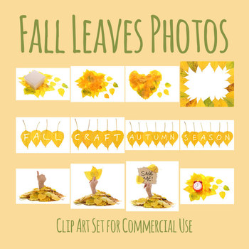 Fall / Autumn Photos - Words and Leaves Photograph Clip Art Set Commercial Use